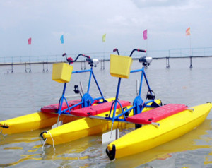 Amusement Water Bicycle With Cheap Price