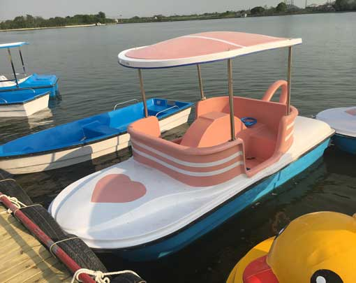 4 Seater Cup Theme Paddle Boat In the Water