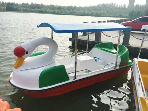 4 Seat Swan Paddle Boat for Sale